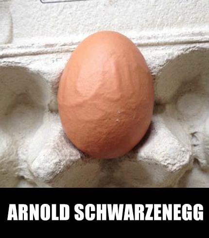 Arnold SchwarzenEGG